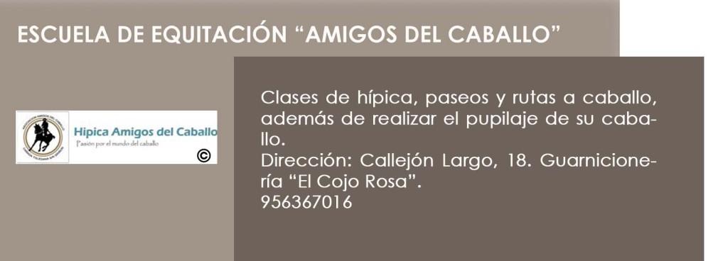 AMIGOS DEL CABALLO