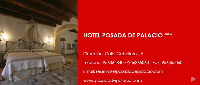 HOTEL POSADA DE PALACIO copia