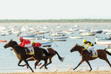 BANNER WEB carreras de caballos 2016 copia