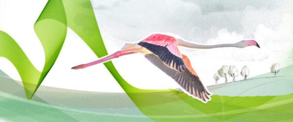 portada-folleto-medioambientalb